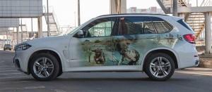 Оклейка частных авто.